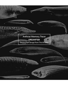 ARTIFICIAL MEMORY TRACE - And/43 - US - and/OAR - CD - Organfish