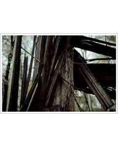 MARC BEHRENS - AATP14 - Germany - aufabwegen - CD - Animistic [For Donatella]