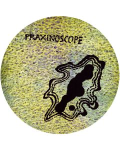 PRAXINOSCOPE - ASP08 - Italy - A Silent Place - PicLP - s/t