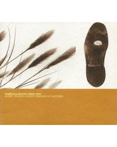 FABIO ORSI/GIANLUCA BECUZZI - ASP12 - Italy - A Silent Place - CD - Muddy Speaking