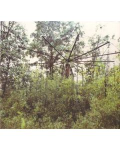 JOHN WIESE - BN014CD - USA - Blossoming Noise - CD - Black Magic Pond