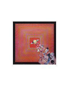 LAY LLAMAYS - BW22 - Italy - Backwards - LP - The Lay Llamas