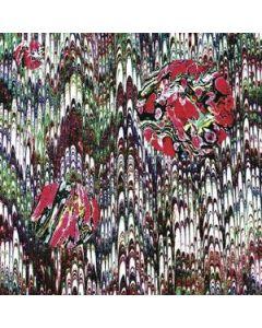 EVIL MADNESS - DeMEGO 018CD - Austria - EditionsMEGO - CD - Super Great Love