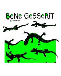 BeNe GeSSeRiT - EE33 - Belgium - EE Tapes - CD - Eccentric ????
