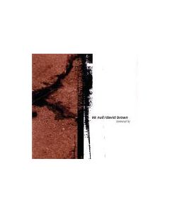 K.K.NULL/DAVID BROWN - GF012 - USA - Ground Fault Recordings - CD - Terminal Hz