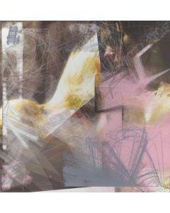 "SHIFT - Hedlam 01 - UK - Heidenlärm Sounds - 7"" - Have No Fury"