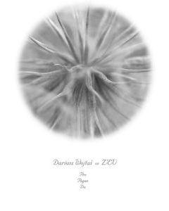 DARIUSZ WOJTAS vs Z'EV - N 022 - Poland - Nefryt - CD - Pro Pagan Da