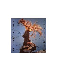 HEATSICK - PAN 19 - Germany - PAN Records - LP - Intersex