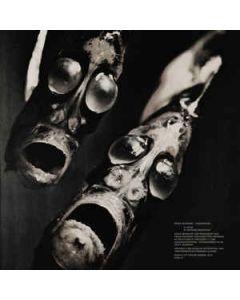 FRANK DOMMERT - PCSV 41 - Pacific City Sound Visions &#8206 - LP - Kiefermusik