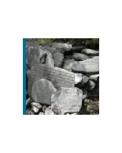 ORIGAMI GALAKTIKA/I:WOUND/INDERST ELIA - pulse zero: three - Czech Republic - Purple Soil - CD - Monolake