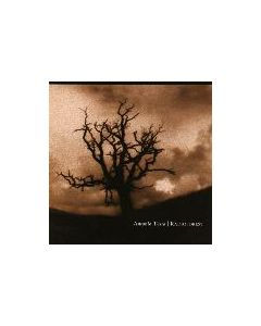 ANTONIO TESTA - TANTRA X27 - Russia - Tantric Harmonies - CD - Radioforest