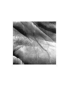 MIKE SHIFFLET - TYPE098V - UK - Type Recordings - LP - Merciless