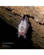 PETER BEHRENDSEN - 628.05 - Germany - Edition Telemark - LP - Nachtflug/Atem Des Windes