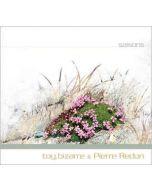 TOY BIZARRE & PIERRE REDON - aatp24 - Germany - aufabwegen - CD - Saisons