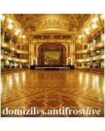 VARIOUS - domizil19 - Switzerland - domizil - 2xCD - domizil vs. antifrost live