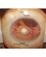 DEBT OF NATURE - HARBINGER111 - UK - Harbinger Sound - LP -  Order Spoil The Entire State