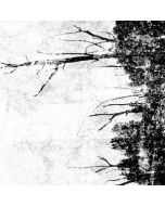 CAULBEARER - INFERNAL016 - USA - Crucial Blast - MC - Haunts