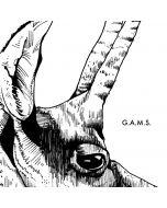 G.A.M.S.