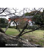 MERZBOW - OCCD27 - UKR - Old Captain - CD - Hanakisasage