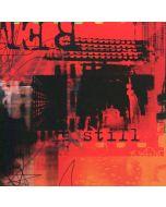 STILL - PG004 - USA - Public Guilt - CD - Remains