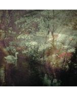 ELODIE - Scie 811 - Belgium - La Scie Doree - LP - Echos Pastoraux